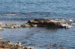 Прогноз клева в кирове на вятке – Прогноз клёва рыбы в городе Киров