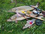 Снасти рыбалка на щуку – виды, особенности изготовления своими руками и применения на рыбалке, выбор в зависимости от сезона и других условий ловли.
