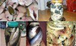 Соленая скумбрия в маринаде рецепт – 12 рецептов домашнего посола скумбрии, сельди, кильки и мойвы