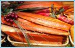 Срок годности рыбы холодного копчения в холодильнике – Сколько хранится рыба холодного копчения?