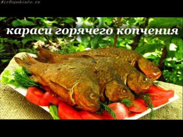 Рецепты приготовления рыбы острогой #5