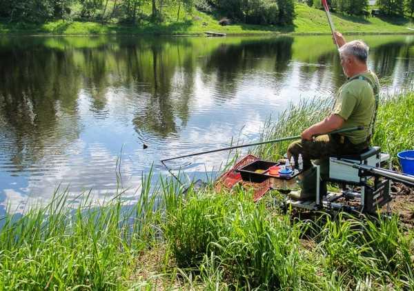 Рыбалка на матчевую удочку когда начинает клевать видео